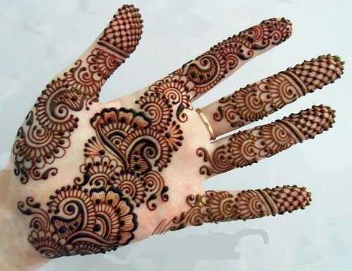 Pakistan Mehandi Design 1